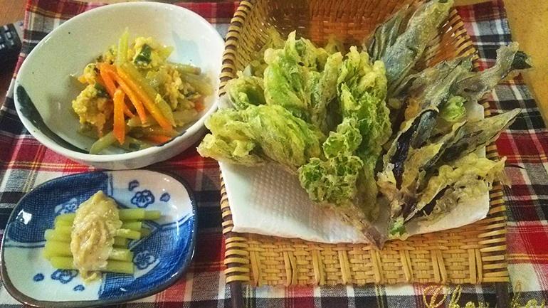 ツワの卵とじ・ツワサラダ・浜ぼうふ(長命草)・はんだま(スイゼンジナ)の天ぷら